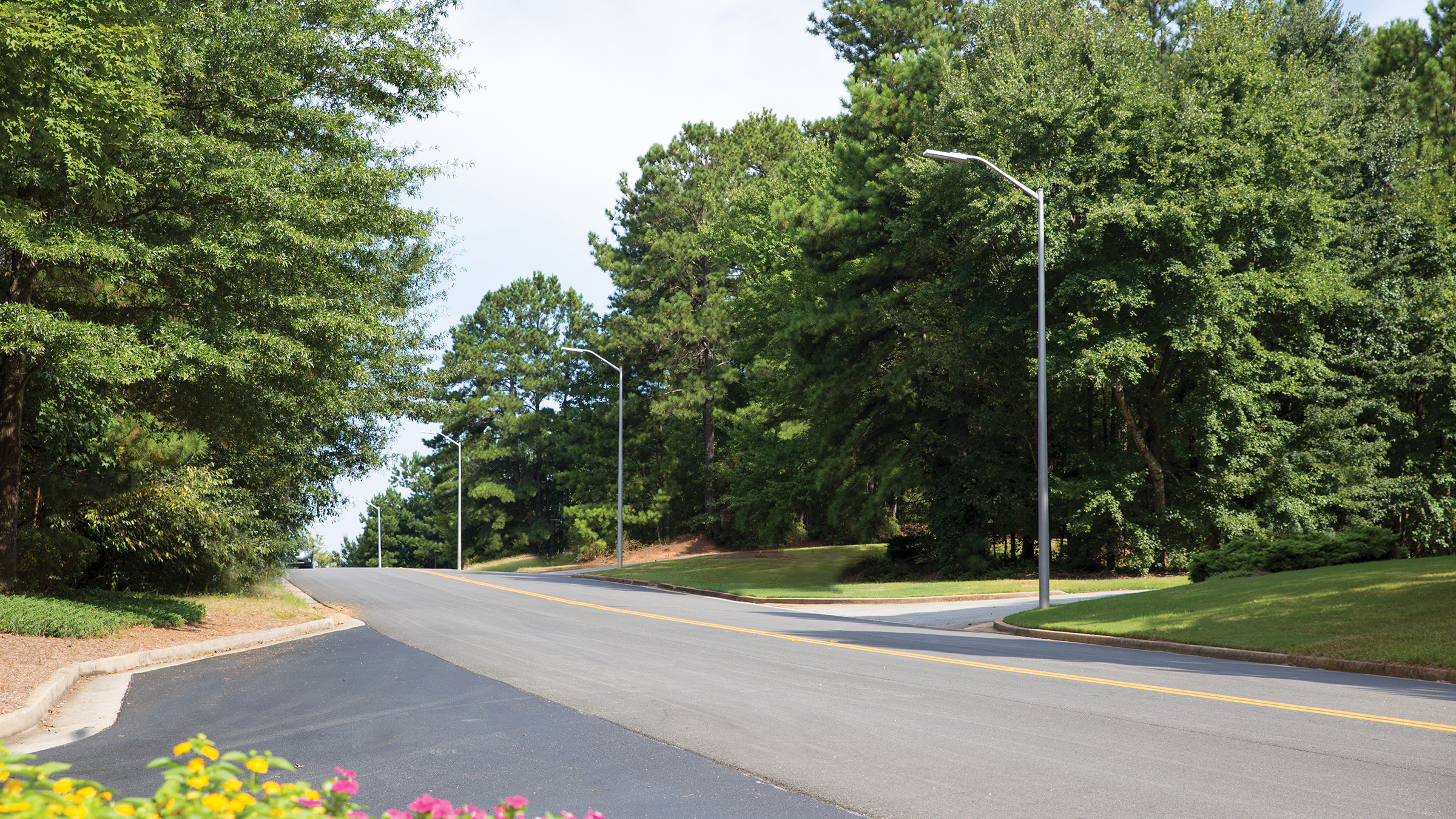 Residential roadway with street lights